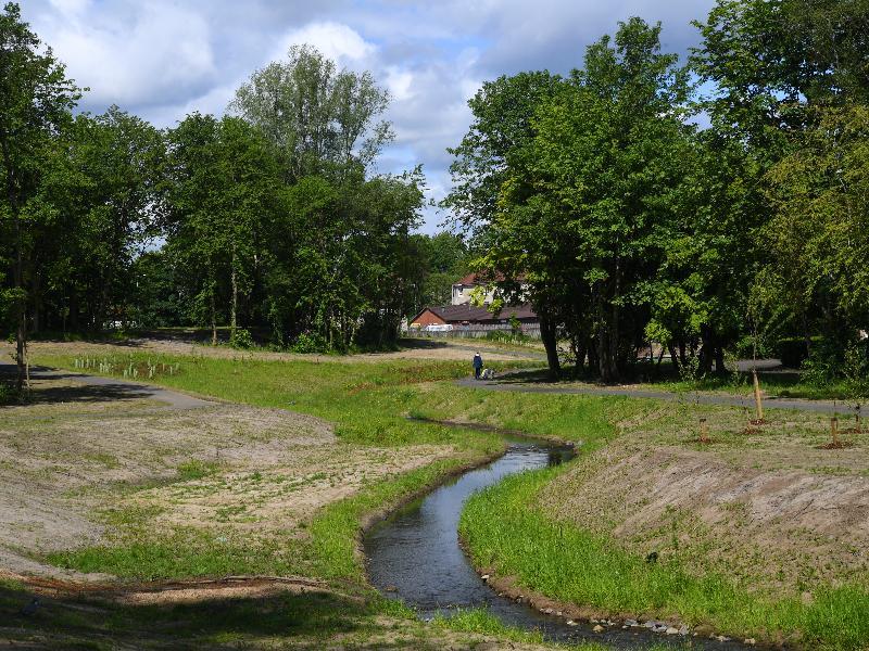 Sandyhills Park - Daylighted burn 2