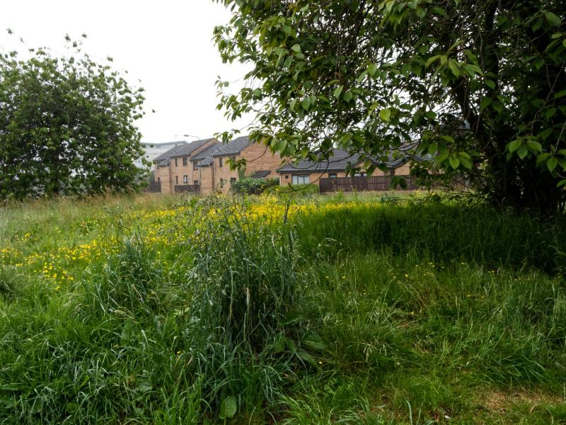 Vacant site in Maryhill to be sold by council for £1 to Barnardo's Scotland